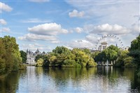 London and a Thames River Lunch Cruise